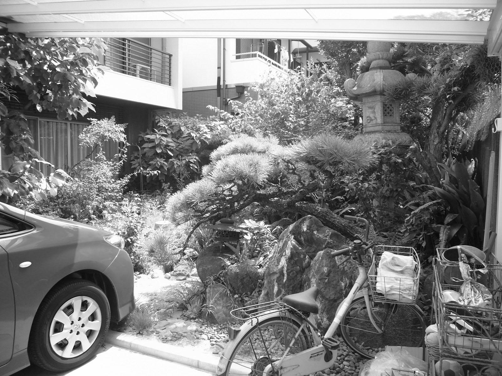 和風の庭木が多い茂る庭