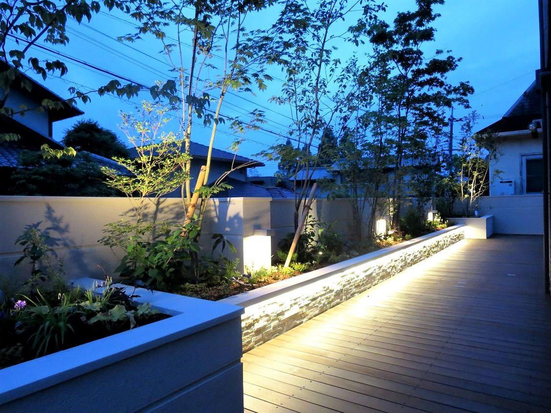 夜景の庭の写真